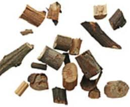 Cinnamomi cassiae ramulus; GuiZhi