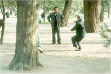 Qigong im Park